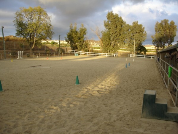 Our Arena has plenty of space to ride!